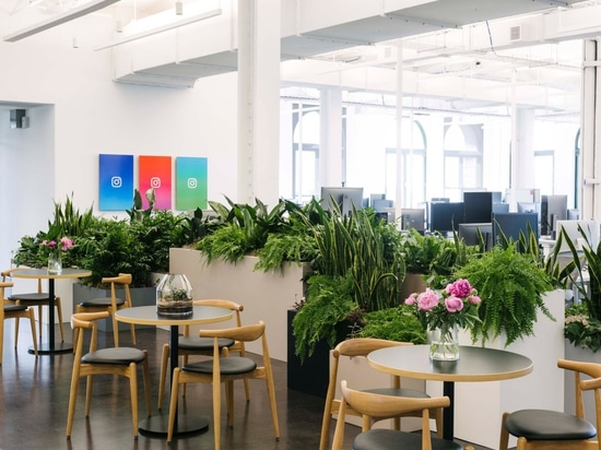 Instagram's new Manhattan offices by Gehry Partners provide ample photo opportunities
