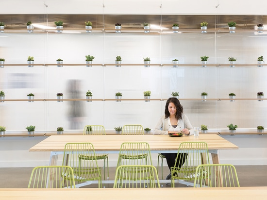 NeoCon: Biophilic Design in the Workplace for Health and Happiness