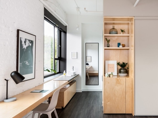 StudioAC outfits Toronto's Annex hotel with plywood furniture