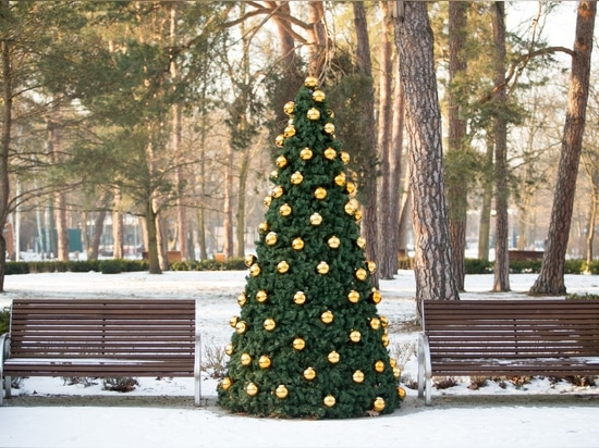 Christmas covers for the urban space- how does it work?