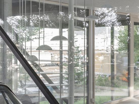 Casa CCFF / Leopold Banchini Architects