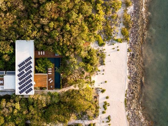 Sordo Madaleno organises beachfront Casa Cozumel around plant-filled courtyard