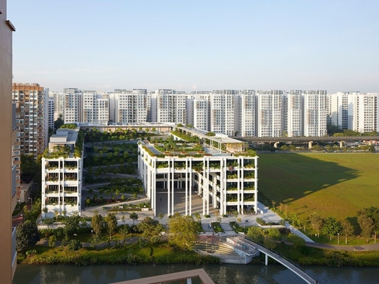 serie and multiply architects complete bucolic 'oasis terraces' in singapore