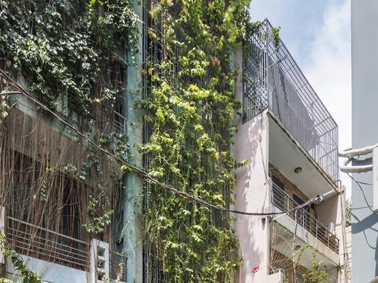 Breathing House / VTN Architects