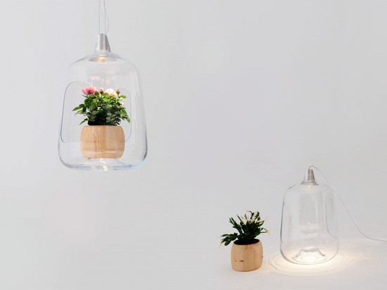 HOUSE PLANTS GET MORE LIGHT WITH MILO BY LIGHTOVO
