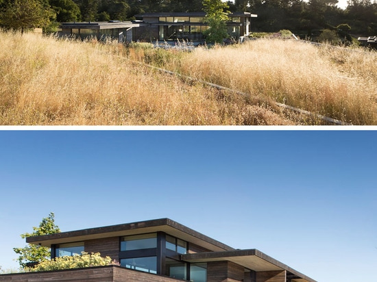 The Meadow House by Feldman Architecture