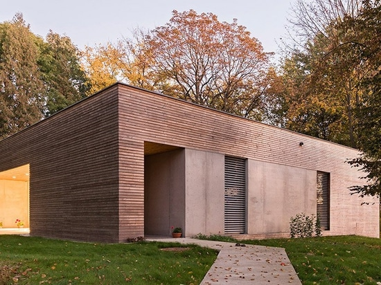 081 architekci forms timber-clad 'house in the woods' in poland