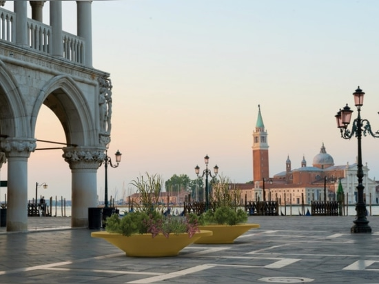Lux means light – all about the latest pot for cities