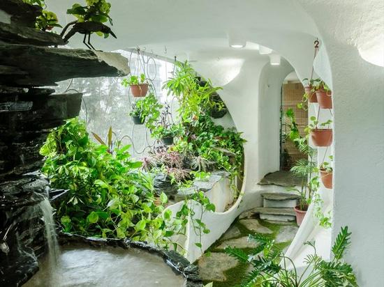 Garden Room: Transforming an Urban Mumbai Apartment into a Lush Oasis