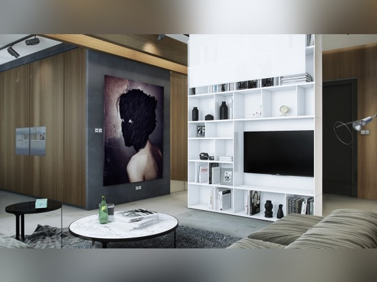 Sleek Interiors For A Range Of Personalities Russia