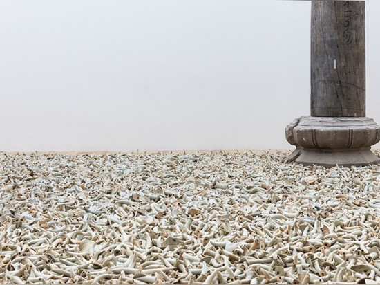 Detail of Spouts Installation, 2015 (also seen above), which contains 10,000 antique spouts from Song to Qing dynasties.