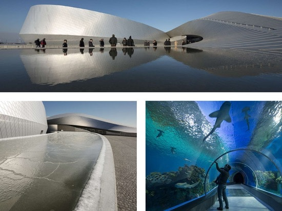 4. Architecture +Water