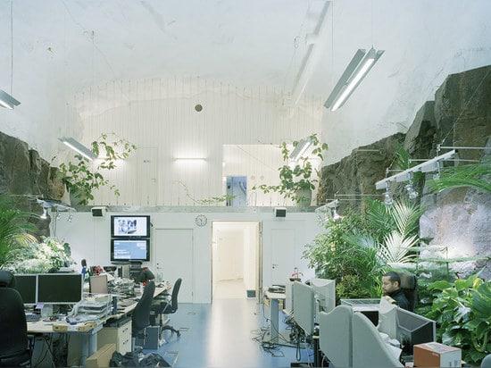 PIONEN WHITE MOUNTAIN OFFICES