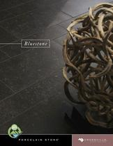 Bluestone Brochure