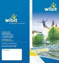 Wibit Flyer