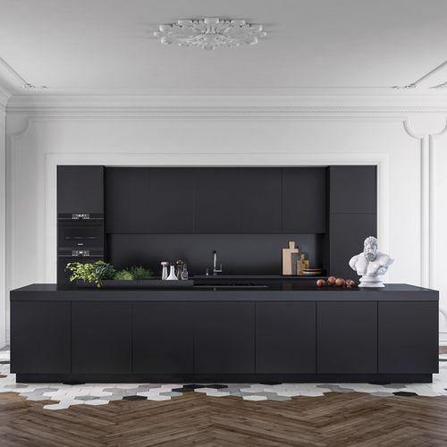 cozinha contemporânea / em madeira lacada / com ilha / profissional