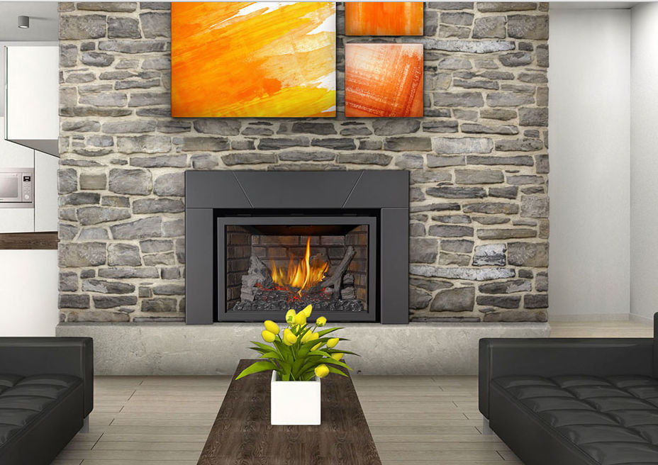 Gas Fireplace Insert Xir3 Napoleon Fireplaces Videos