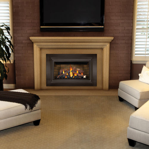 Gas Fireplace Insert Gdizc Napoleon Fireplaces