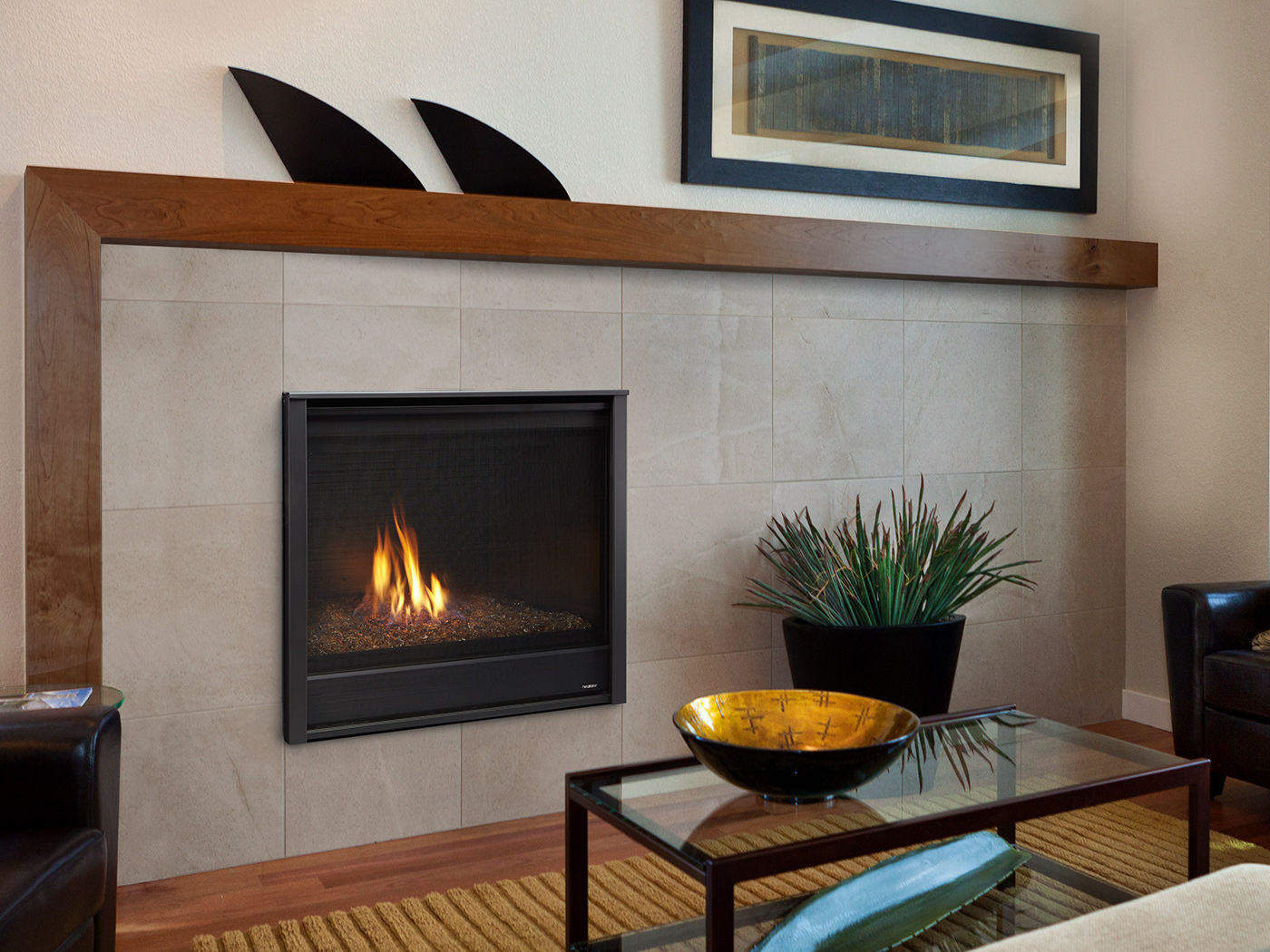 Gas Fireplace Traditional Closed Hearth Built In