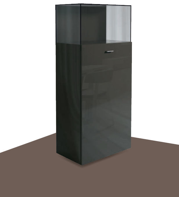 Contemporary Display Case Lacquered Wood Glass Now No14 38821 Now By Hülsta