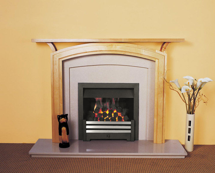 Gas Fireplace Insert Gas Conversion Series Jetmaster