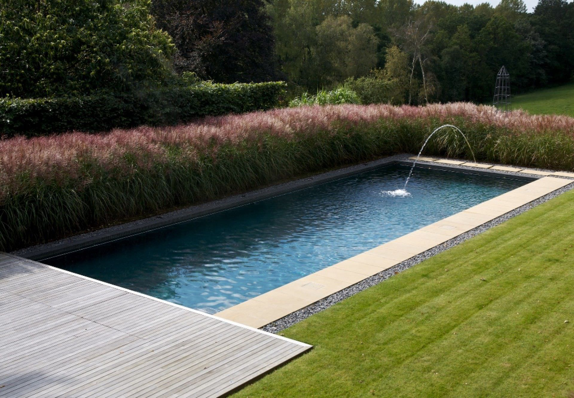 Garden With Swimming Pool natural swimming pool - landscaped gardens - guncast