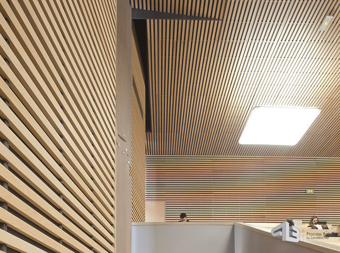 Wood Wall Cladding Wooden Interior Sound Absorbing