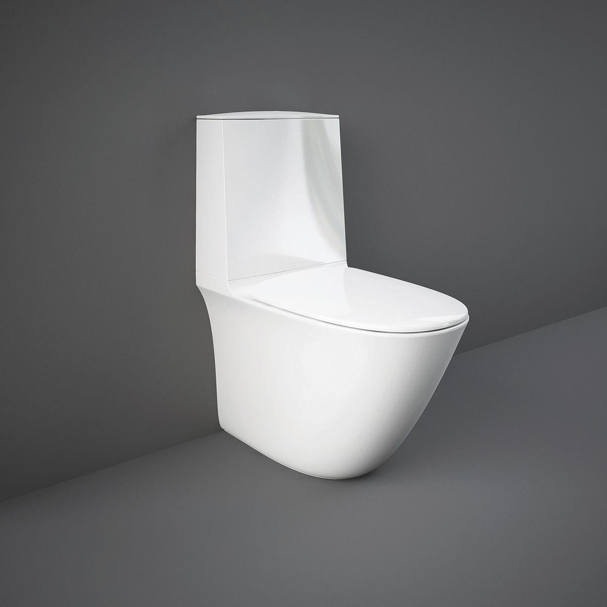 Free Standing Toilet Ceramic With Low Tank Rimless Rak