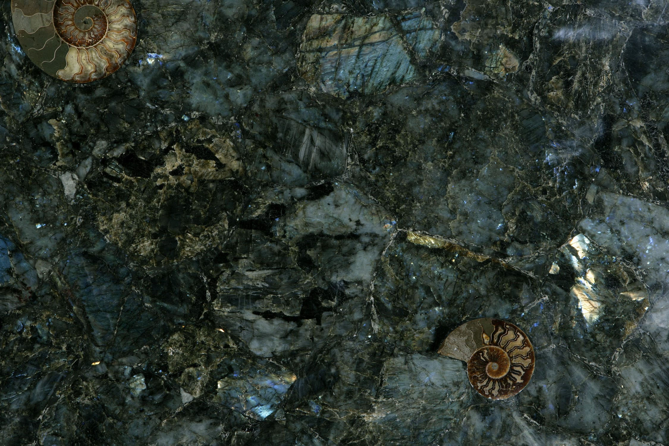 Semiprecious stone countertop / Solid Surface / petrified