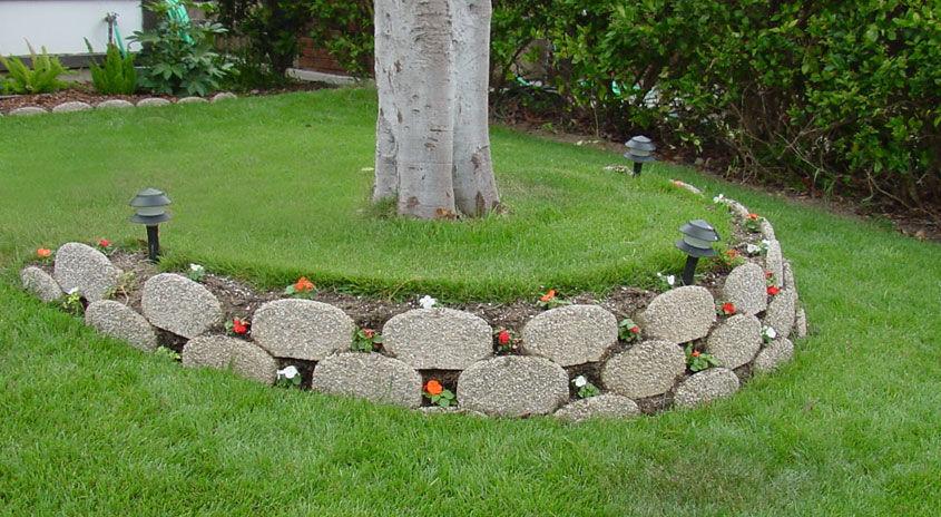 Concrete Retaining Wall Tree Rings