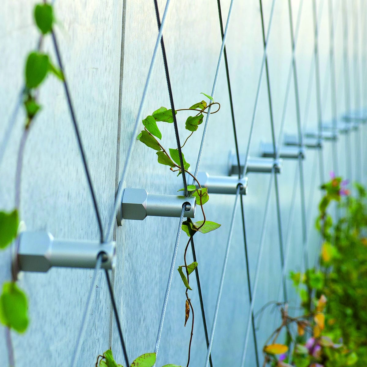 Preserved Green Wall Greencable Carl Stahl Arc Gmbh Custom Indoor Garden