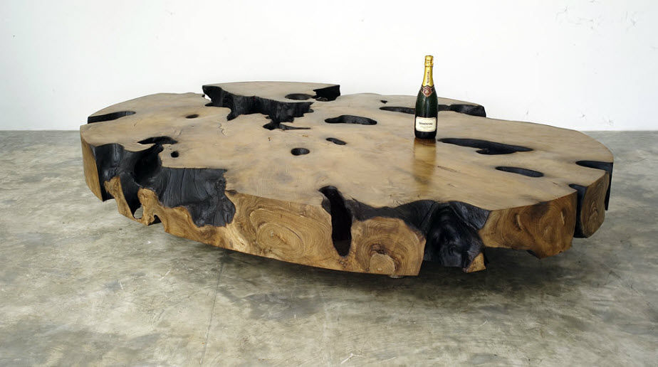 Contemporary Coffee Table Petrified Wood Ovale