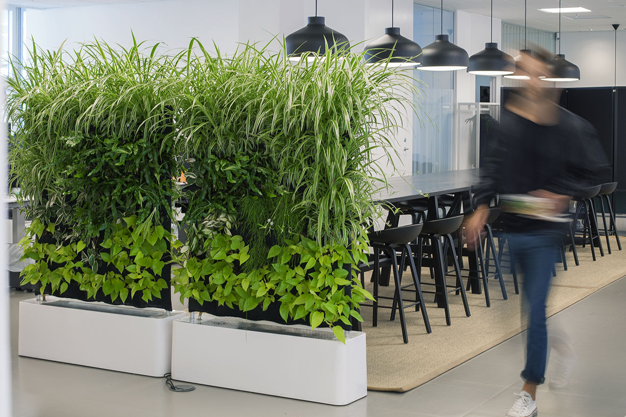 Green wall with live plants - MOVING HEDGE - GREENWORKS ...