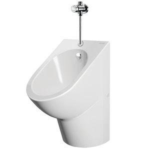 wall-mounted urinal