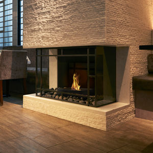 central fireplace insert