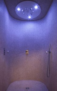 multi-function shower