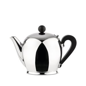 polished stainless steel teapot