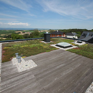 flat green roof / extensive / intensive / for inclined roofs
