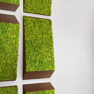 preserved green wall / modular-panel / natural / moss