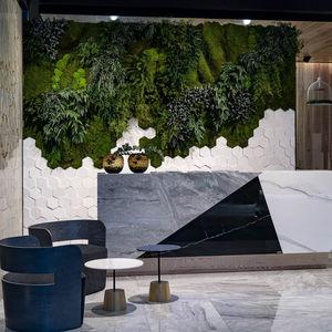 preserved vertical garden