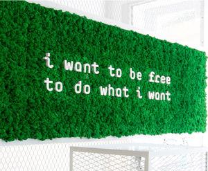 lichen green wall