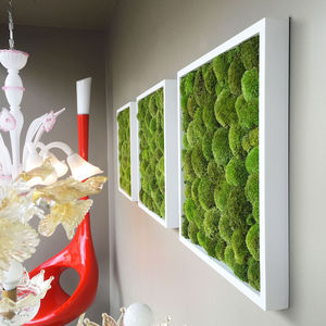 preserved living frame / moss / indoor / modular-panel