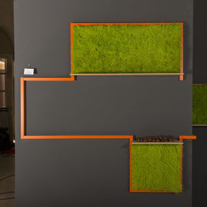 preserved living frame / natural / indoor / wall-hung