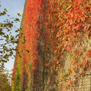 modular-panel green wall