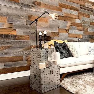 wall-mounted paneling / wooden