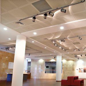gypsum suspended ceiling