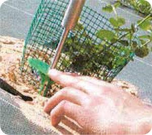 plastic weed control staple