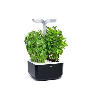 plastic garden planter / home / indoor
