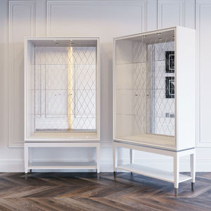 contemporary display case / glass / ash / stainless steel