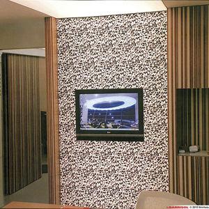 design stretch ceiling